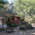 Le Mas de la Perouse , Ardeche, Villa Villa Jeanne, Vue Extérieure 9