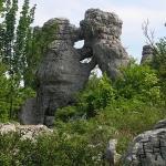 Bois de Paiolive, Ardèche, à découvrir